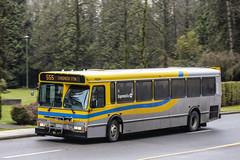 P9204_555 (rickyruan) Tags: bus translink orion v