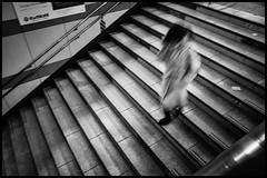 Shinjuku Station, JR, Shinjuku-ku, Tōkyō-to (GioMagPhotographer) Tags: tōkyōto ricohgr metrostation shinjukuku eastofthesun peoplesingle shinjuku japanproject flowing japan tokyo tkyto