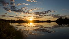 MQDZ_Windfall_2 (Bonbonagaz) Tags: tree lake sunset quebec north sun sky canada windfall color james bay baie