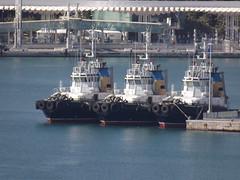port de Malaga (Vincentello) Tags: port malaga remorqueur tugboat