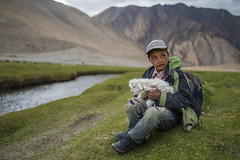 Young Shepherd (Ravikanth K) Tags: 500px young shepherd lamb newborn boy kid grassland mountains ladakh pangong tso outdoor water streme portrait people travel fur sitting frontview cold herder