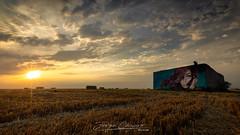 Juliette (www.jorgelazaro.es) Tags: juliette cielo pintura unillla nubes landscape graffiti sol campo atardecer paja paisaje alguaire cataluña españa es