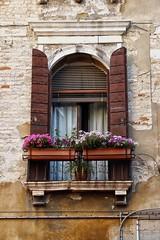 Window and flowers (Patrizia1966) Tags: venezia venice italy italia laguna veneto 2018 picoftheday holiday