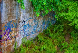 Overgrown And Written On