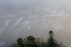 Pictures in the Snow (Keith Midson) Tags: mtwellington kunanyi hobart tasmania mountain snow snowing tree landscape canon 400mm foothills