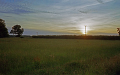 The end of the day (Gabo Barreto) Tags: sunset film 35mm olympus trip35 c41 colourfilm field analoguephotography ishootfilm filmisnotdead 135 clouds green countryside