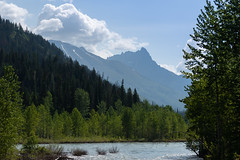 Wild Montana (Kevin VanEmburgh Photography) Tags: explore glacier glaciernationalpark kevinvanemburghphotography montana mountains nationalpark nature travel firtrees snow snowcapped wild stream landscape landscapephotography layers cold summer