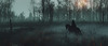 Horsewoman of War (U K I Y O) Tags: wild hunt witcher 3 game gaming screenshot screenarchery reshade mood tones moody