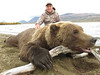 Alaska Brown Bear Hunt - Peninsula 4