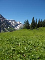 Interlude: Bernese Mountains (M_Strasser) Tags: berneseoberland berneroberland switzerland schweiz suisse svizzera olympus olympusomdem1