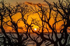 Por do  Sol no Mirante dos Aflitos (ladgon) Tags: bahia igrejadosaflitos salvador mirantedosaflitos pôrdosol goldenhour sunset seascape