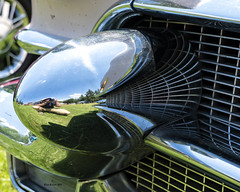 Distorted Selfie (brentus69) Tags: alberta canada cars vintage classic restored chrome reflections ukrainianvillage summer sonya6500 bumper distorted selfie cadillac