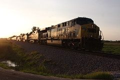 That summer sun.... (MILW157) Tags: prlx bnsf up csx rock siding adams sub union pacific train railroad