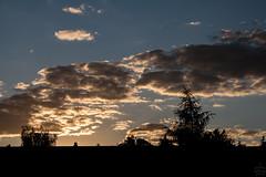 Sunset / @ Dresden / 2018-07-01 (astrofreak81) Tags: sunset dresden clouds sky birds sonnenuntergang wolken