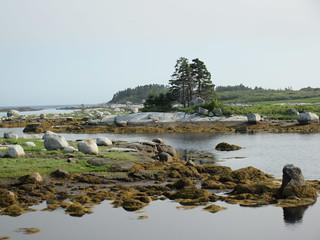Rocks at low tide, Peggy's Cove Soi, inlet, Nova Scotia
