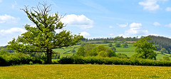 SPRING LANDSCAPE (chris .p) Tags: nikon d610 view wales brecon uk spring 2018 capture scene fields may