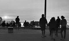 Machlud / Le coucher du soleil - Soulac-sur-Mer (Rhisiart Hincks) Tags: blancinegre duagwyn gwennhadu dubhagusgeal dubhagusbán blackandwhite bw zuribeltz blancetnoir blackwhite monochrome unlliw blancoynegro zwartwit sortoghvid μαύροκαιάσπρο feketeésfehér juodairbalta