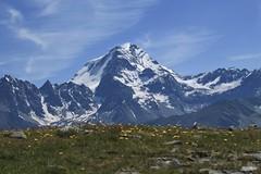 Grand Combin 4314 mètres (bulbocode909) Tags: valais suisse bourgstpierre valdentremont grandcombin montagnes nature neige nuages prairies fleurs vert bleu jaune groupenuagesetciel