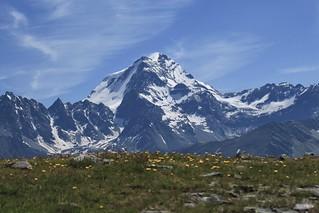 Grand Combin 4314 mètres