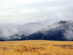 Morning (markb120) Tags: valley lowland vale dale glen bottom hill mound knoll rise mount height fog mist haze smoke brume toman cloud eddy