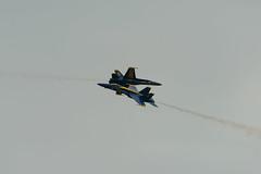 Close Pass (Josh152) Tags: navy airshow fa18hornet nikon d800 fa18 chippewavalleyairshow blueangels figher plane nikond800 usn cvas18