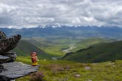 Matreshka on the grasslands of Tagong, Tibetan Sichuan (valerian.guillot) Tags: planar1450 ze canon planart1450 russia china doll grasslands grassland grass sichuan tibet matrioshka