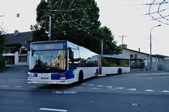 Autobus articulé MAN Lion's City n°685 en service sur la ligne 8. © Marc Germann (Marc Germann) Tags: trolleybus naw bt25 bus remorques convois retrobus hesskiepe hesskièpe nawhess nawhesssiemens nawfbw rétrobus par brise routes arbres autobus lions city articulation man hess transports publics tl lausanne