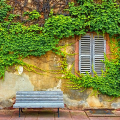 In Kloster Bronnbach, Taubertal, Baden-Württemberg (Janos Kertesz) Tags: bench klosterbronnbach bronnbach badenwürttemberg wall house green old plant building architecture home background leaves ivy window frame creeper growth