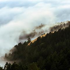Mount Tamalpais Fog (ddouangc) Tags: mount tamalpais nature sunset fog san francisco bay area mt tam