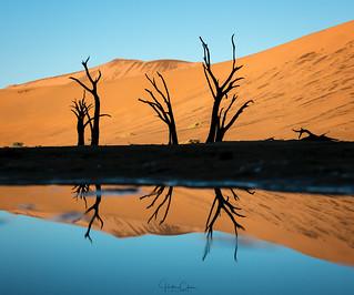 Deadvlei Reflection