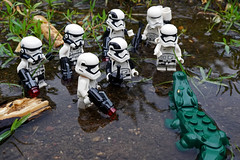 Confrontation (Gary Burke.) Tags: lego stormtrooper empire imperial starwars movie soldier villain evil lucasfilm scifi film sciencefiction legofigures minifigures armor military lucas character lucasfilms imperialstormtrooper galacticempire toy legominifigures toys toyphotography legophotography legobricks sony a6300 mirrorless sonya6300 firstorder water macro walk hiking walking alligator hike soldiers animal reptile gator dangerous danger