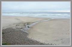 \ / Arcadia Beach Vista - IV. \ / (Wolverine09J ~ 1.5 Million Views) Tags: midnightandoregonjun18 lowtide staterecreationsite northcoast pacific waves sand cloudysky horizon rockstrewn beach gulls seashore batslair