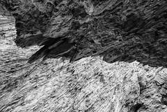 Rocks (Guy Goetzinger) Tags: schweiz nikon d850 goetzinger rock sw bw blackwhite granit nature abstract abstrait abstrakt structure rocks felsen rocher monochrome