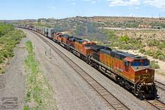 Intermodal at Gallup (ColoradoRailfan) Tags: bnsf bnsfrailway bnsfgallupsub gallupsub intermodaltrain