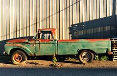 1966 Ford F250 Twin I-beam Pickup Truck (Cragin Spring) Tags: illinois il midwest mchenrycounty northernillinois green richmond richmondil richmondillinois unitedstates usa unitedstatesofamerica 1966fordf250 1966 fordf250 fordtruck pickuptruck pickup rust rusty orangerust twinibeam