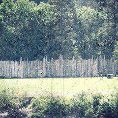 HFF .. (daniel j. villeneuve) Tags: fence clôture bois wood arbre ottawa canada hff happyfencefriday djfotos fencedfriday ilevictoria