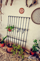 (FERN/\NDO /\LBORNOZ) Tags: tools town farmer grid grille plants playground patio
