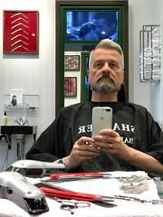 At Barbershop watching Casablanca. (silvpix) Tags: guy man casablanca grooming barbershop barber beard