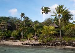 Daybreak Bora Bora (Marcia H) Tags: 2017 borabora frenchpolynesia sofitelprivateisland beach palmtrees sabbatical tree water tropical