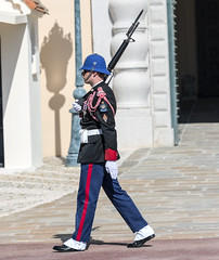 Soldier Walking his Post (dcnelson1898) Tags: monaco frenchriviera mediterraneansea france coast cruise cruiseship vacation travel oosterdam hollandamericaline ship military army honorguard sentry palace