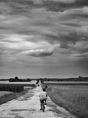 Old path among the fields (un2112) Tags: balatonszabadi summer june g80 road clouds landscape bw blackandwhite monochrome hungary countryside