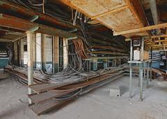 Hibernaculum (jgurbisz) Tags: jgurbisz vacantnewjerseycom abandoned nj newjersey essexgeneratingstation powerplant industrial decay newark snakes