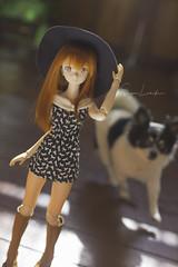Frappé (Sugar Lokifer) Tags: azone50 azone doll obitsu japanese toy sword art online yuki asuna