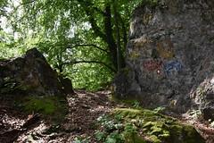 DSC_1826 (gregorv) Tags: slovenia slovenija kum planine mountains mountain nature narava