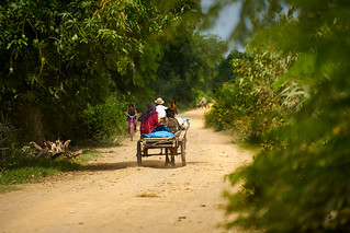 Horse Drawn Cart on a dirt road in Cambodia
