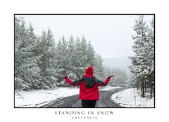 Woman standing in falling snow in winter time (sugarbellaleah) Tags: famela snow countryside road countrylane trees forest winter woman snowflakes climate weather cold chilly recreation leisure travel tourism australia pinetrees pineforest mountain season evergreen standing outdoors armsoutstretched people lifestyle