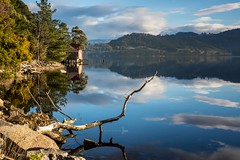 Life on the edge (jenni 101) Tags: australia river photographybyjen sigmaart18 reflections tasmania peaceful