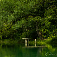 Peacefull harbor (Jerzy Orzechowski) Tags: grass leaves peacefull visegrad harbour shadows river pier water reflections light green glow trees deck bosnia
