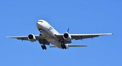 Air New Zealand 777 (Average Photographer 1992) Tags: planes planespotting plane airplanes aviation aviationphotography airliner airplane aircraft nikon nikonphotographer nikonphotography nikonuser nikond7200 nikonphoto vancouver vancouverinternationalairport vancouverbc vancouvercanada yvr britishcolumbia britishcolumbiacanada canada boeing boeing777