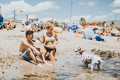 You, Pitia and me (Leo P. Hidalgo (@yompyz)) Tags: fuengirola playa de perros dog beach málaga dalmatian dálmata couple lof love summer